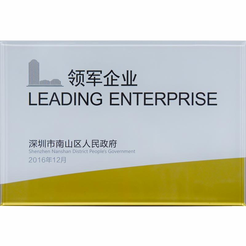 Leading enterprise